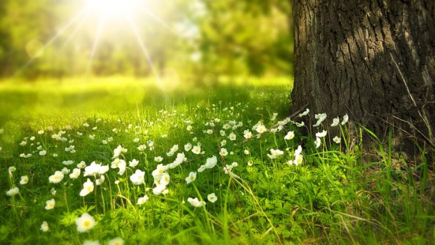 Frühjahrsdepression